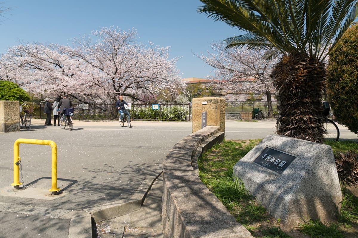 万代池公園