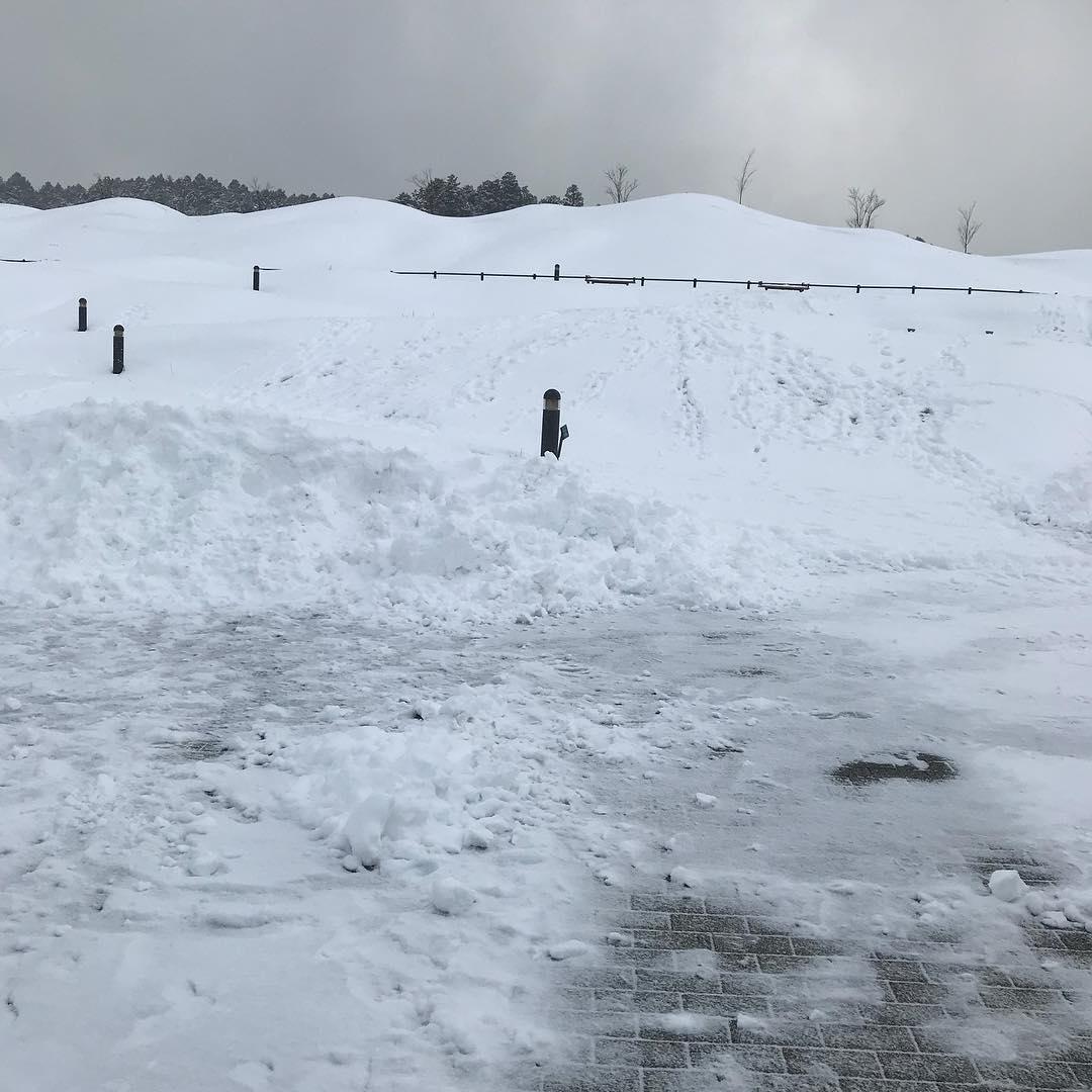 <br /> 雪化粧!<br />