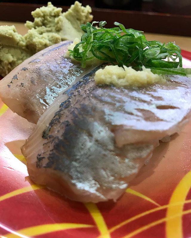 お寿司は鯵が一番好きなのである!🍣🍣<br /> アジが好きなんや!